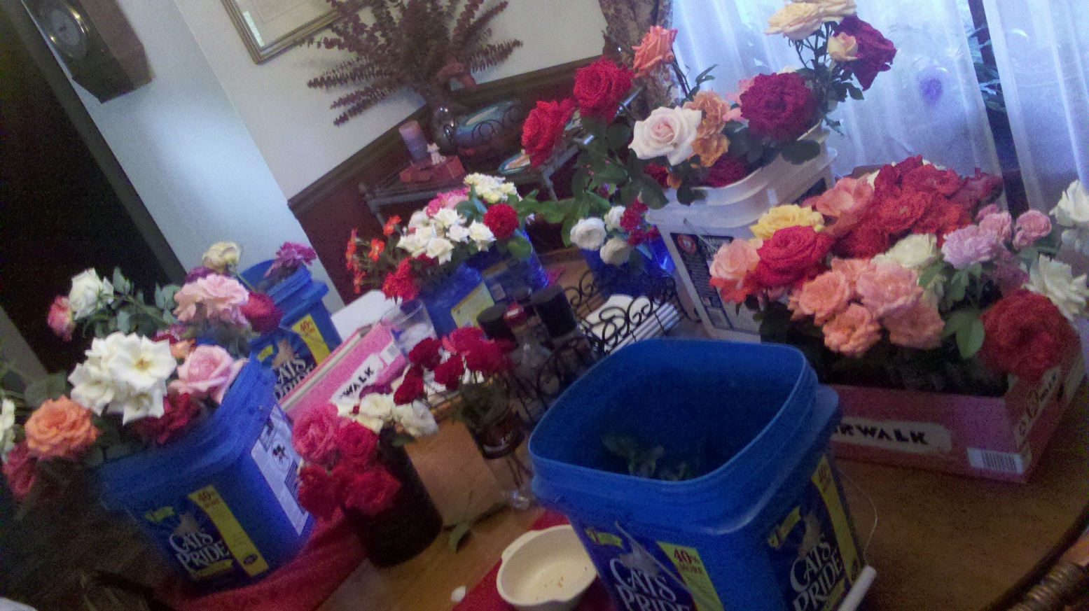 Prepping Roses for the Nursing Home